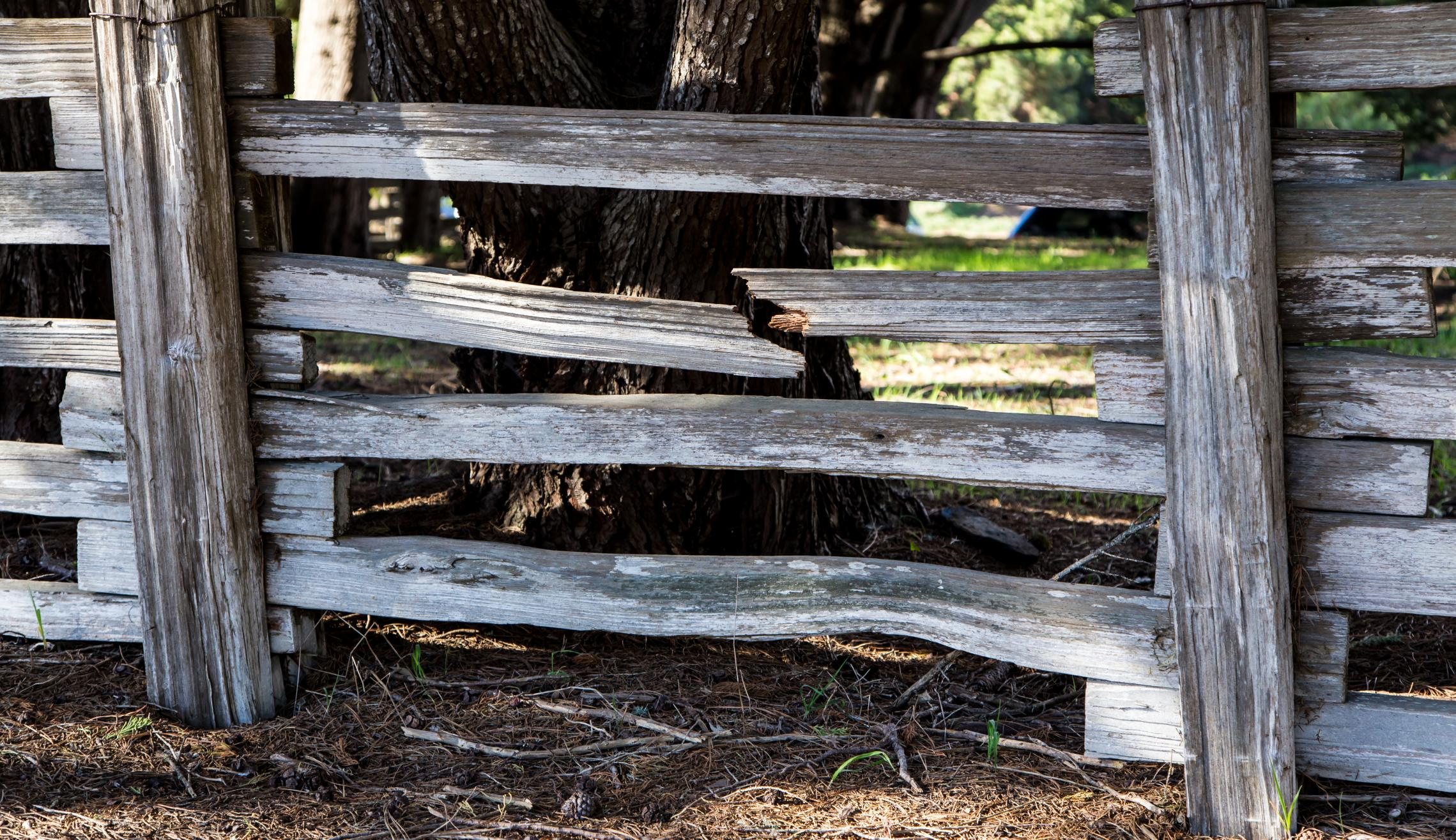 damaged wooden fence in alexandria virginia